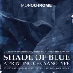 """นิทรรศการภาพถ่าย """"Shade of blue"""""""